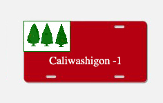 flag-aluminum_license_plate-5